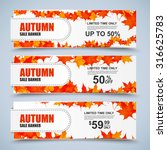 autumn collection sale banners...   Shutterstock .eps vector #316625783