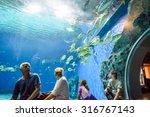 copenhagen  denmark   august 01 ... | Shutterstock . vector #316767143