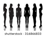 silhouettes of beautiful  and... | Shutterstock . vector #316866833