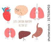Cute Cartoon Anatomy Vector Se...