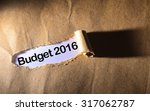 Small photo of torn paper with word budget 2016