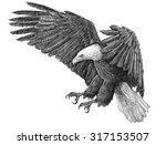 eagle swoop monochrome...   Shutterstock . vector #317153507
