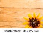 Beautiful Flower On Blurred...