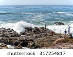 people at point lobos  watching ...