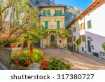 picturesque small town street... | Shutterstock . vector #317380727