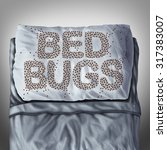 Bed Bug On Pillow And In Bed A...