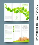 stylish nature trifold ... | Shutterstock .eps vector #317439773