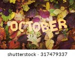 autumn  yellow leaves  the word ... | Shutterstock . vector #317479337