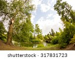 view from kew gardens  royal... | Shutterstock . vector #317831723
