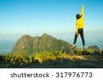 man jumping celebrating success ... | Shutterstock . vector #317976773