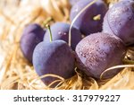 purple plum in drops of water... | Shutterstock . vector #317979227
