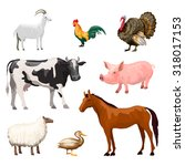farm animals decorative icons... | Shutterstock . vector #318017153