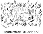 black vector hand drawn floral... | Shutterstock .eps vector #318044777