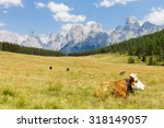 Beautiful Alpine Panorama ...