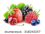 Isolated Various Summer Berrie...