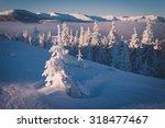 solar frosty morning. spruce... | Shutterstock . vector #318477467