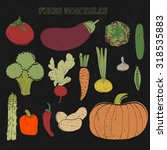 fresh vegetables set . hand... | Shutterstock .eps vector #318535883