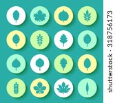 vector illustration  set of... | Shutterstock .eps vector #318756173