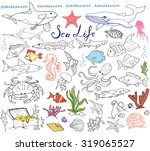 Big Sea Life Animals Hand Draw...