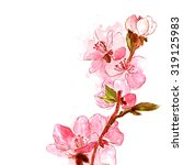 delicate japanese cherry...   Shutterstock . vector #319125983