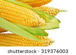 corn isolated on white... | Shutterstock . vector #319376003