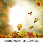autumn leaves | Shutterstock . vector #319626653