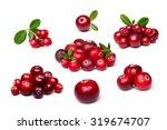 Wild Northern Berries ...