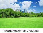 green grass field in big city... | Shutterstock . vector #319739003