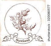 Sketch Style Caledonian Thistl...
