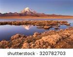 sajama national park  bolivia | Shutterstock . vector #320782703