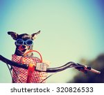 small dog in sunglasses or... | Shutterstock . vector #320826533