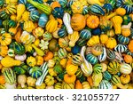Colorful Ornamental Pumpkins...