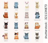 icons cats. breed cats. cats in ... | Shutterstock .eps vector #321134873