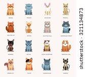 Icons Cats. Breed Cats. Cats I...
