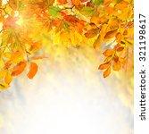 amazing nature golden autumn... | Shutterstock . vector #321198617