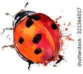 Ladybird Beetle T Shirt...