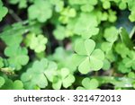 green nature with copy space... | Shutterstock . vector #321472013