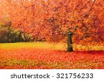 autumn landscape with red... | Shutterstock . vector #321756233
