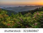 mountain laurel bask in the... | Shutterstock . vector #321860867