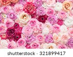 flowers in the studio   Shutterstock . vector #321899417