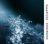 Real Snowflake Macro