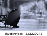 depressed woman crying in the... | Shutterstock . vector #322220243