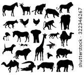 animals collection isolated on... | Shutterstock .eps vector #322346267