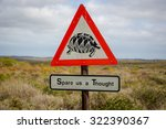 Sign Warning About Turtles In...
