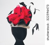 Red Flower And Black Feathers...