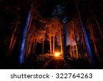 Dark Forest With Campfire At...