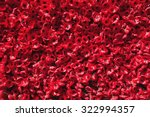 Ornamental Red Poppies Of...
