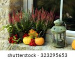 Picturesque Small Decoration I...