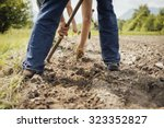 Farmers Working In The Fields...