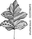 doodle textured leaf ... | Shutterstock .eps vector #323558693